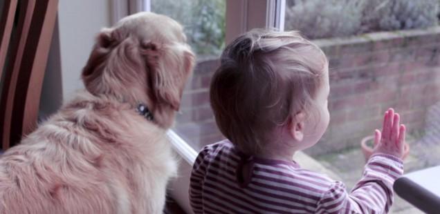 5 minuten #83 – uit het raam