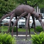 De muggen van W.F. Hermans